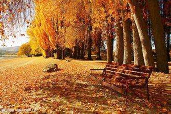 秋分时节|粉末喷塑设备厂家想分一半秋色给你!
